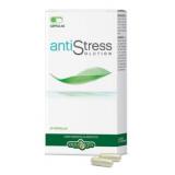 AntiStress Solution · Herbovita · 45 cápsulas