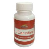 L-Carnitina · Sotya · 90 cápsulas