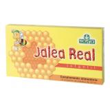 Jalea Real con Vitaminas Infantil · Sotya · 10 ampollas