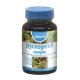 Pycnogenol Complex · Naturmil · 30 cápsulas