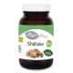 Shiitake BIO · El Granero Integral · 60 cápsulas