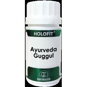 https://www.herbolariosaludnatural.com/11870-thickbox/holofit-ayurveda-guggul-equisalud-50-capsulas.jpg