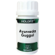 Holofit Ayurveda Guggul · Equisalud