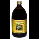 Polynoni · Plameca · 1 litro