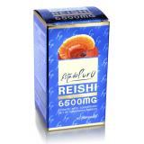 Reishi · Tongil · 60 cápsulas