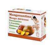 Mangoxantina · DIS · 60 cápsulas