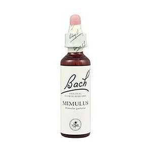 https://www.herbolariosaludnatural.com/1374-thickbox/mimulus-n-20-bach-20-ml.jpg