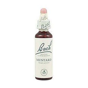 https://www.herbolariosaludnatural.com/1375-thickbox/mustard-n-21-bach-20-ml.jpg