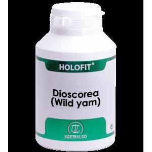 https://www.herbolariosaludnatural.com/14087-thickbox/holofit-dioscorea-wild-yam-equisalud-180-capsulas.jpg