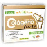 Colágeno Forte · Pinisan · 30 cápsulas
