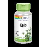 Kelp · Solaray · 100 Cápsulas