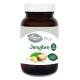 Jengibre Plus · El Granero Integral · 75 cápsulas