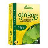 Ginkgo Plus · Drasanvi · 30 comprimidos
