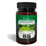 Ginkgo Biloba Capsudiet · Plameca · 40 cápsulas