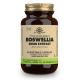 Boswellia Extracto de Resina · Solgar · 60 cápsulas
