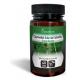 Cola de Caballo Capsudiet · Plameca · 40 cápsulas