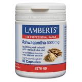Ashwagandha 6.000 mg · Lamberts · 60 cápsulas