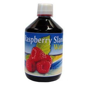 https://www.herbolariosaludnatural.com/1642-thickbox/raspberry-slank-water-espadiet-500-ml.jpg