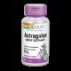 Astrágalo Extracto de Raíz · Solaray · 30 cápsulas