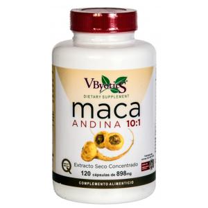 https://www.herbolariosaludnatural.com/17098-thickbox/maca-andina-vbyotics-120-capsulas.jpg