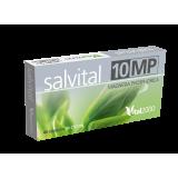 Salvital 10 MP - Magnesia phosphorica · Vital 2000 · 40 cápsulas