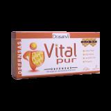 Vitalpur Defensas · Drasanvi · 7 viales