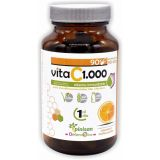 Vita C 1000 · Pinisan · 90 cápsulas