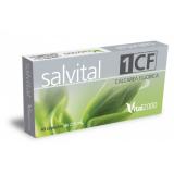 Salvital 1 CF - Calcarea fluorica · Vital 2000 · 40 cápsulas