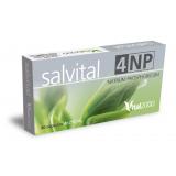 Salvital 4 Natrum phosphoricum 6 DH · Vital 2000 · 50 cápsulas