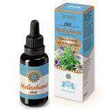 Melisshanti (Ashwagandha) · Hiranyagarba · 30 ml