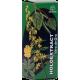 Holoextract Vara de Oro · Equisalud · 50 ml