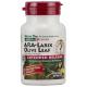 ARA Larix/Hoja de Olivo · Nature's Plus · 30 comprimidos