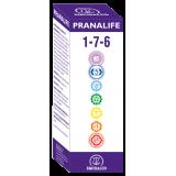 Pranalife 1-7-6 · Equisalud · 50 ml