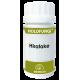 Holofungi Hiratake · Equisalud · 50 cápsulas