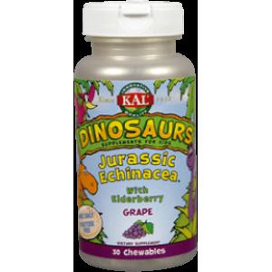 Jurassic Echinacea · KAL · 30 comprimidos