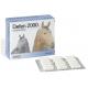 Defen 2000 · Derbos · 60 cápsulas