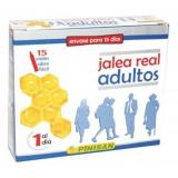 Jalea Real Adultos · Pinisan · 15 viales