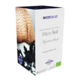 Mico-Sol (Champiñon del Sol HDT) · Hifas da Terra · 70 cápsulas