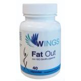 Fat Out · Bioserum · 40 cápsulas