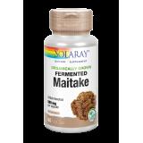 Maitake Fermentado · Solaray · 60 cápsulas