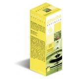 Extracto de Gayuba · Plameca · 50 ml
