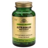 Astragalo Extracto · Solgar · 60 cápsulas