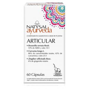 https://www.herbolariosaludnatural.com/9934-thickbox/articular-ayurveda-natysal-60-capsulas.jpg
