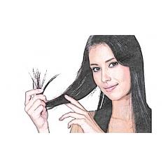 Cuidado del pelo y uñas
