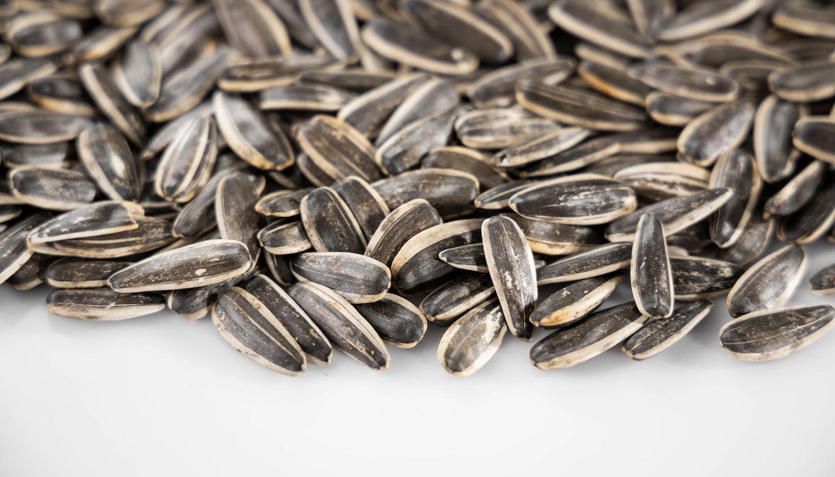 semillas de girasol propiedades,propiedades de las semillas de girasol,girasol,antioxidante,herbolario online,cosmética natural,tratamientos naturales,productos naturales