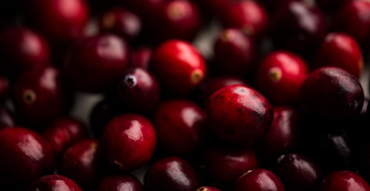 para que sirve el aceite de rosa mosqueta,aceite de rosa mosqueta,beneficios del aceite de rosa mosqueta,como se usa el aceite de rosa mosqueta,herbolario online,cosmética natural,productos naturales