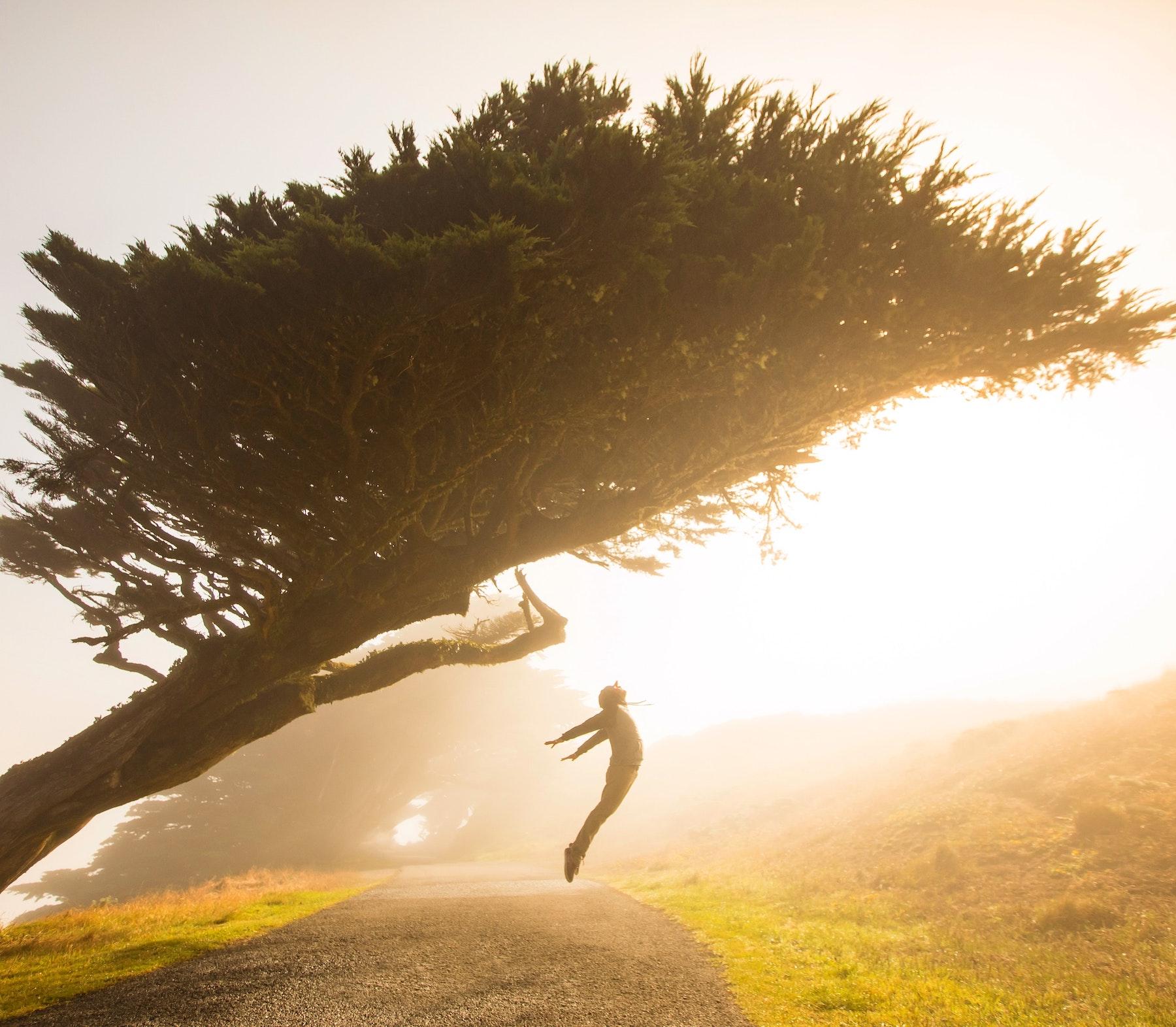 sensación de fatiga, fatiga y cansancio, causas de fatiga, que es la fatiga, astenia,fatiga primaveral, herbolario online,cosmética natural, productos naturales