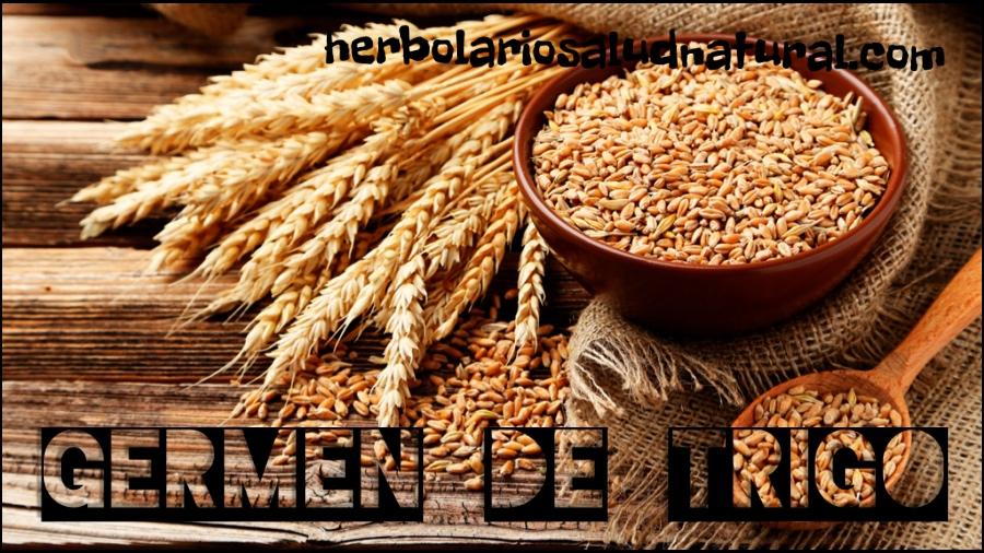 germen de trigo, vitamina e,octacosanol,acidos grasos esenciales, omega 3,omega 6,herbolario online, cosmética natural, tratamientos naturales, productos naturales