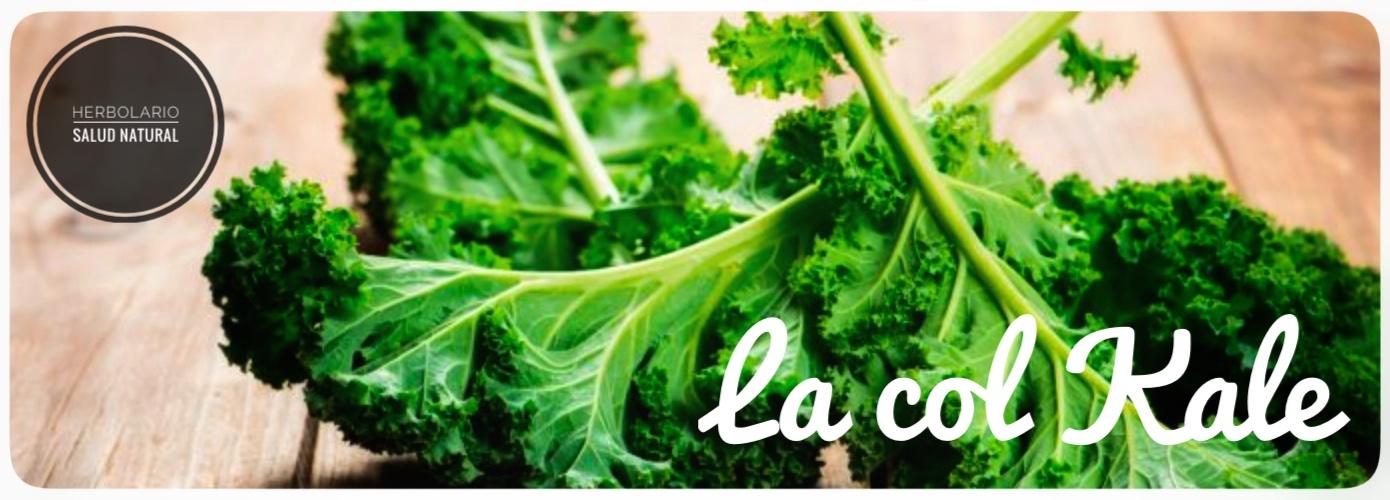 kale,superalimento,vitaminas,minerales,antioxidantes,herbolario online,cosmética natural,tratamientos naturales,productos naturales
