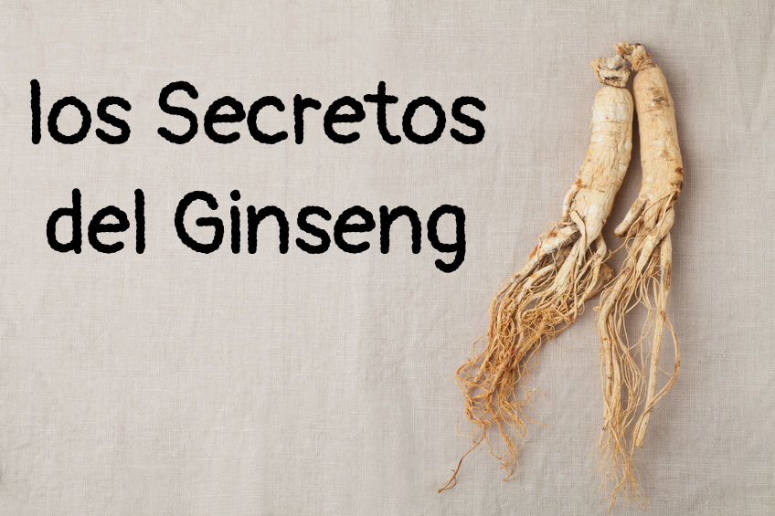 ginseng,raíz de ginseng,ginseng rojo, ginseng negro,resistencia,energia,sistema inmunológico,herbolario online,cosmética natural,tratamientos naturales,productos naturales,cosmética natural